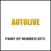 Autolive Paint by Number Kits