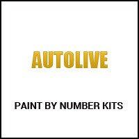 Autolive Paint by Number Kits