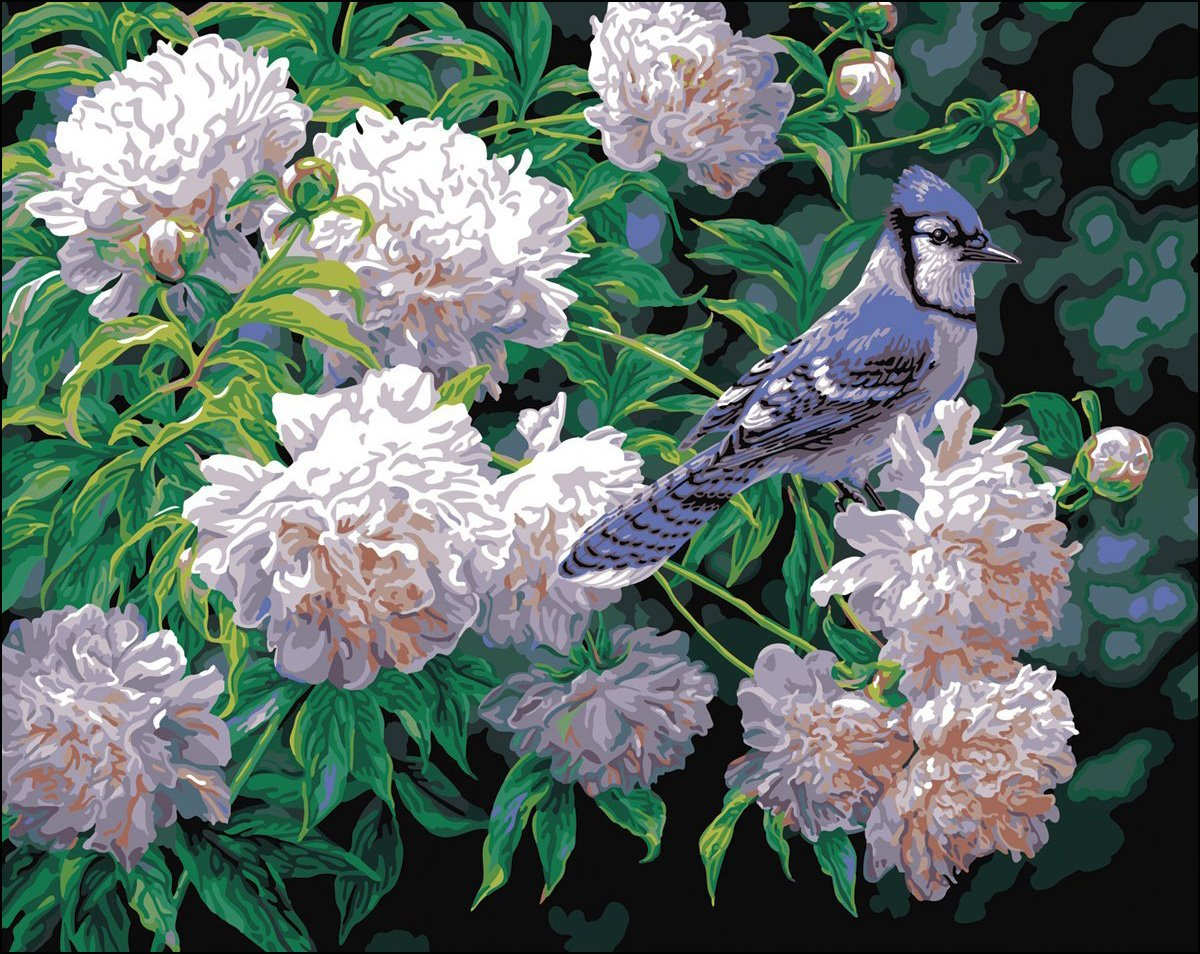 Plaid Blue Jay Paint By Number