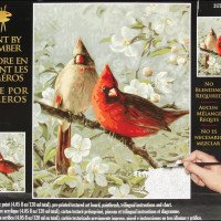 Plaid Paint by number kits birds