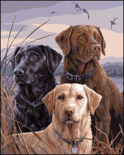 Proud Labs-Plaid Paint By Number Kits