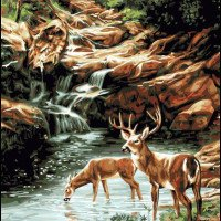Waiting at The Stream-Plaid Paint by Number kit