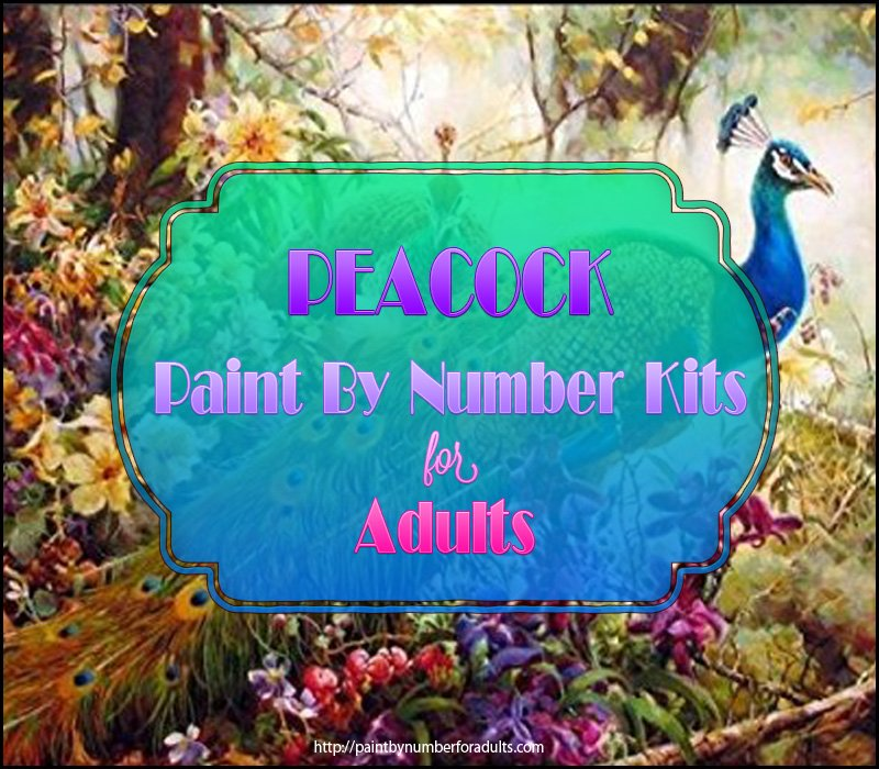 Peacock Paint By Number Kits