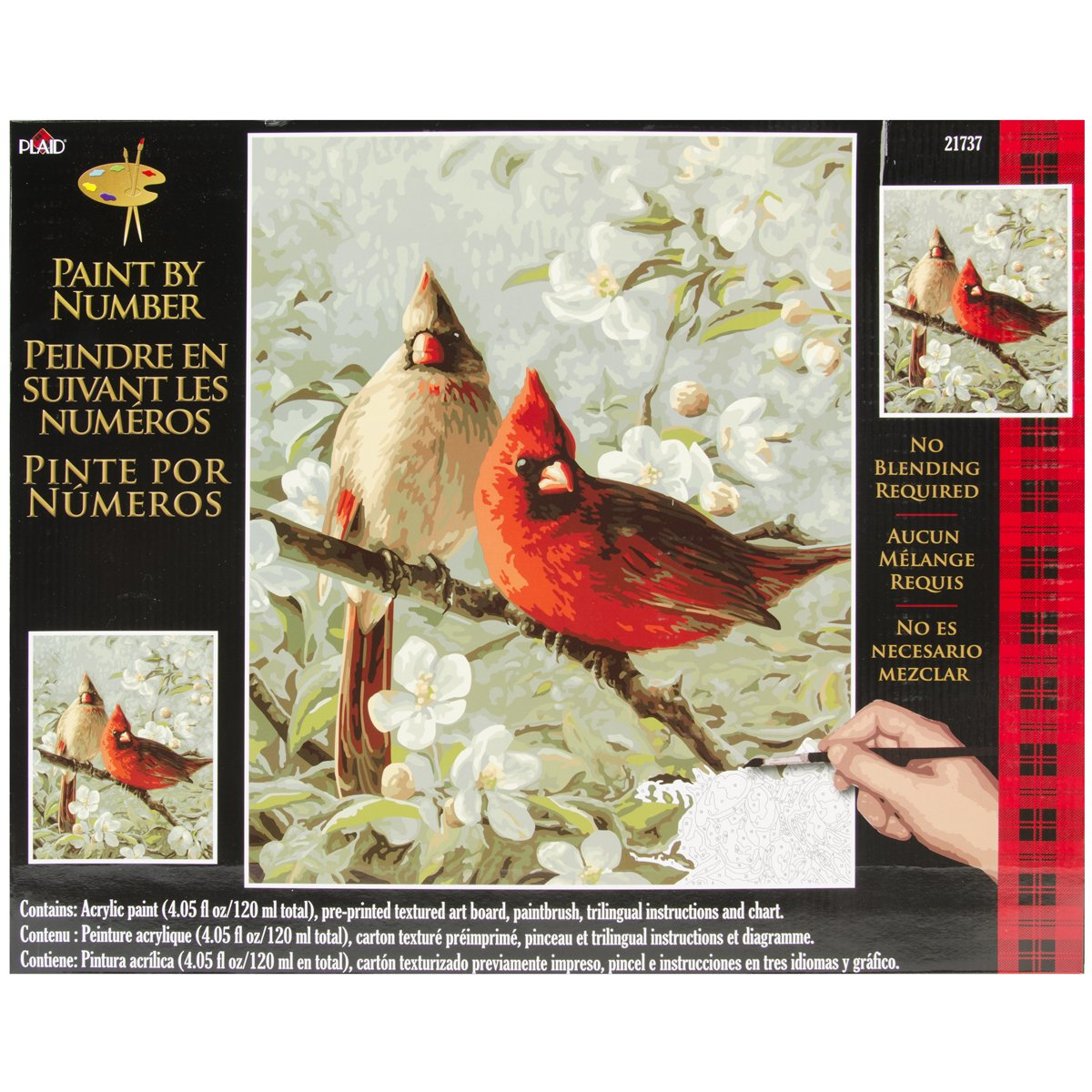 Bird paint by number kits paint by number for adults for Pre printed canvas to paint for adults