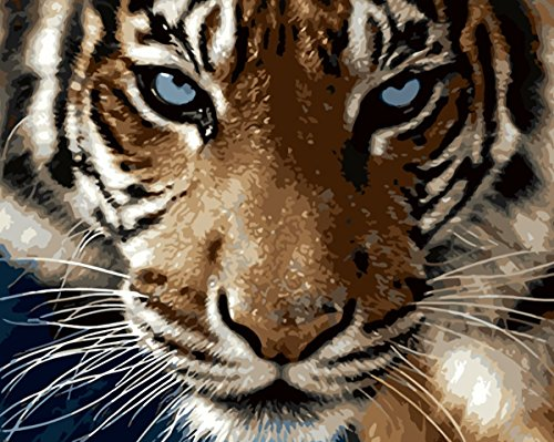 Animal By Paint Number Kits • Paint By Number For Adults