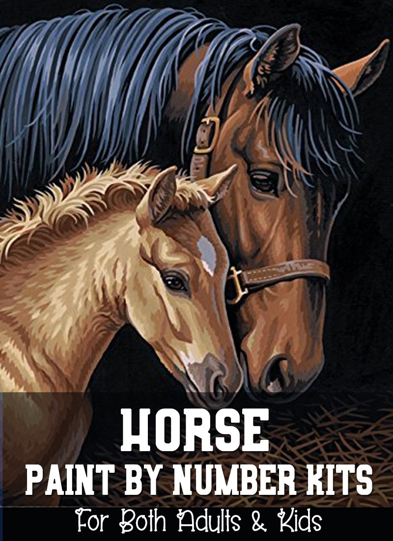 Horse Paint By Number KIts