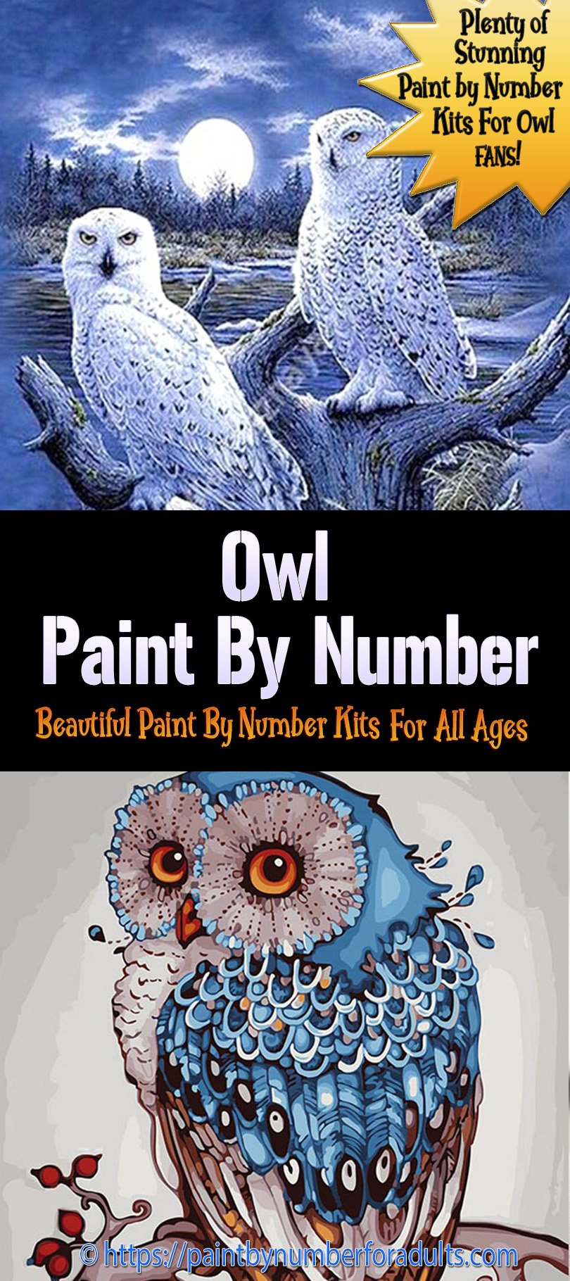 Paint By Number Kits of Owls