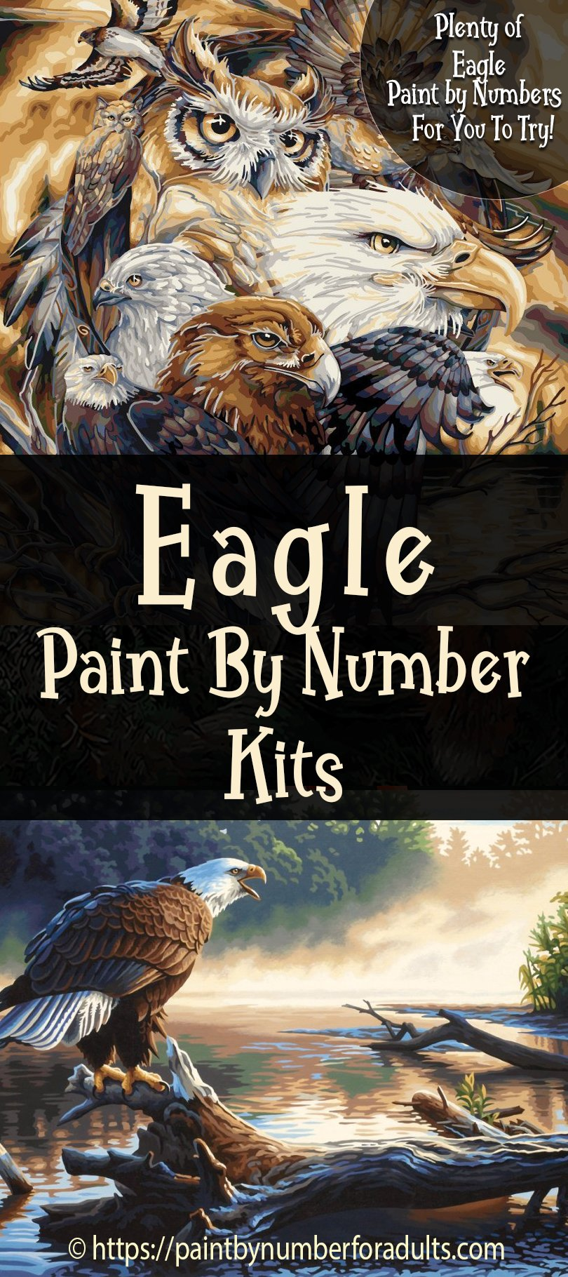 Eagle Paint By Number Kits