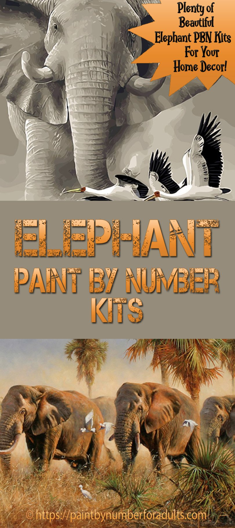elephant paint by number kits