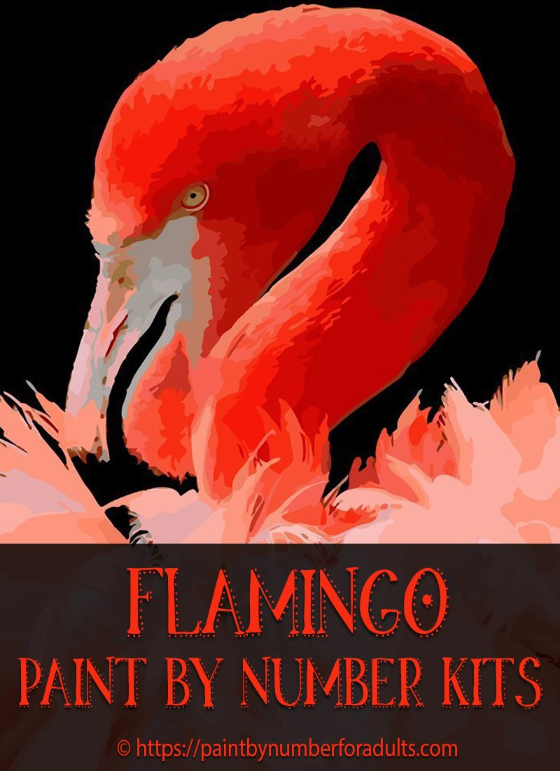 Flamingo Paint By Number Kits