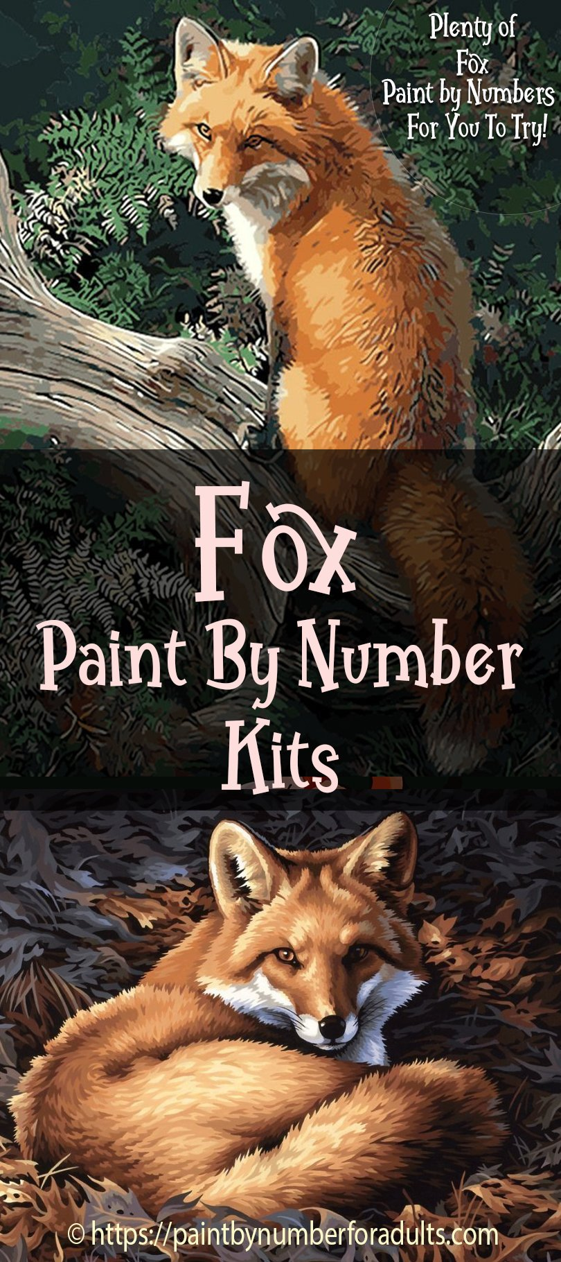 Fox Paint By Number Kits
