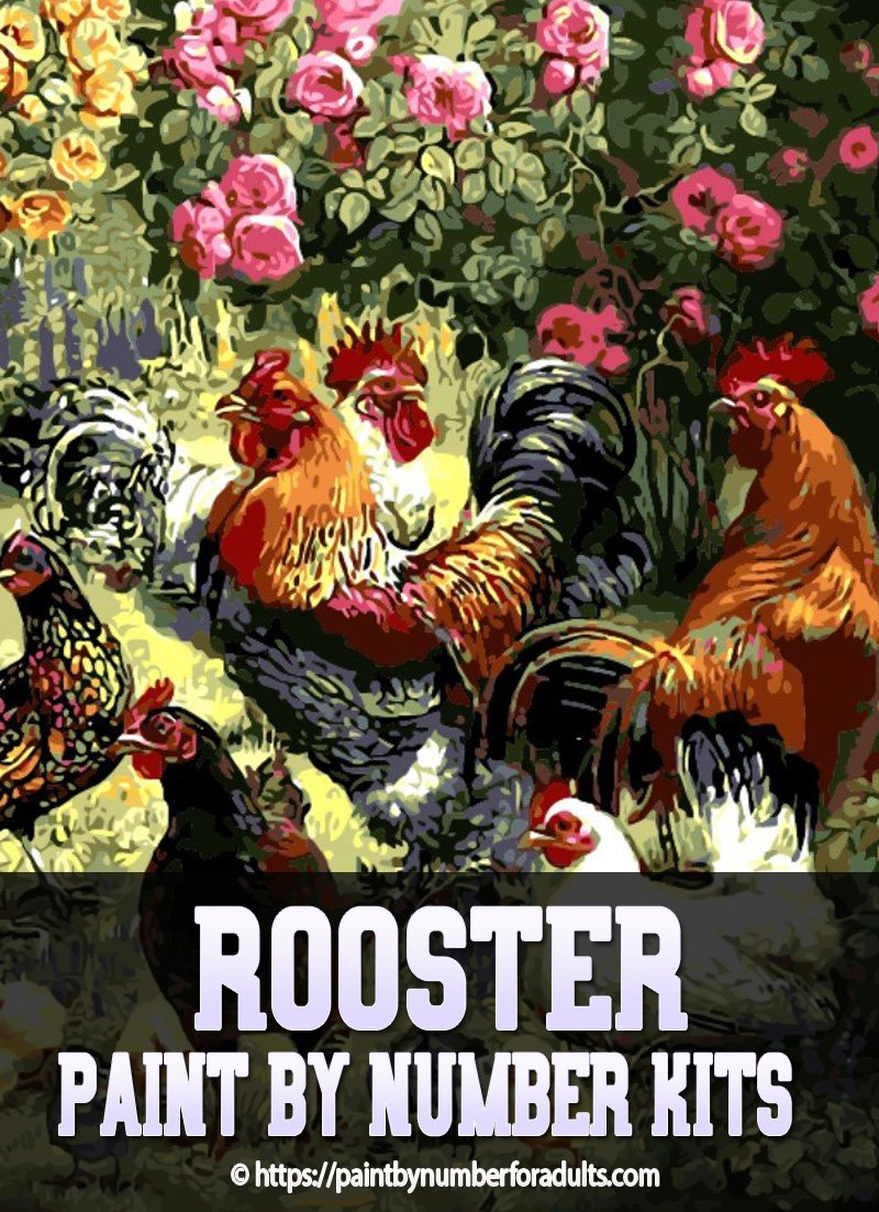 Rooster Paint By Number Kits