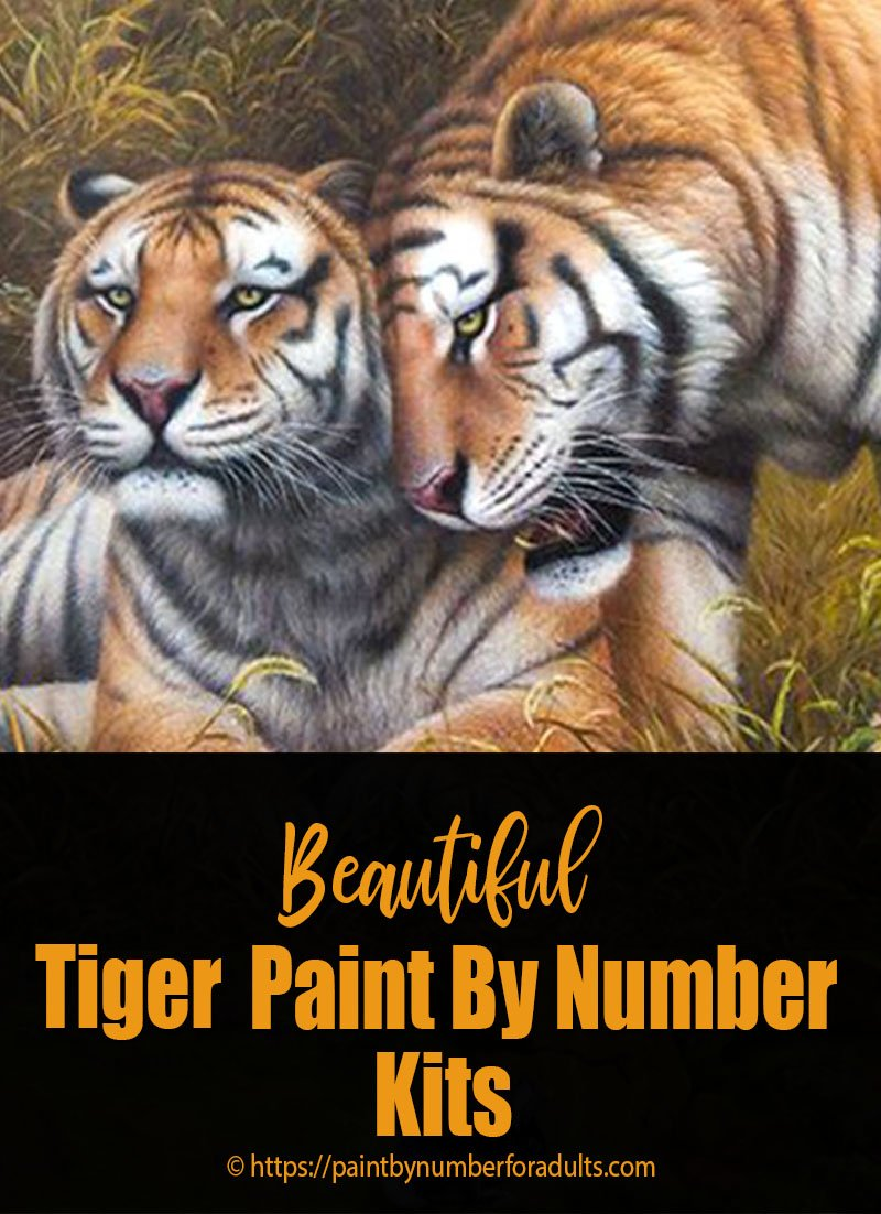 Tiger Paint By Number Kits