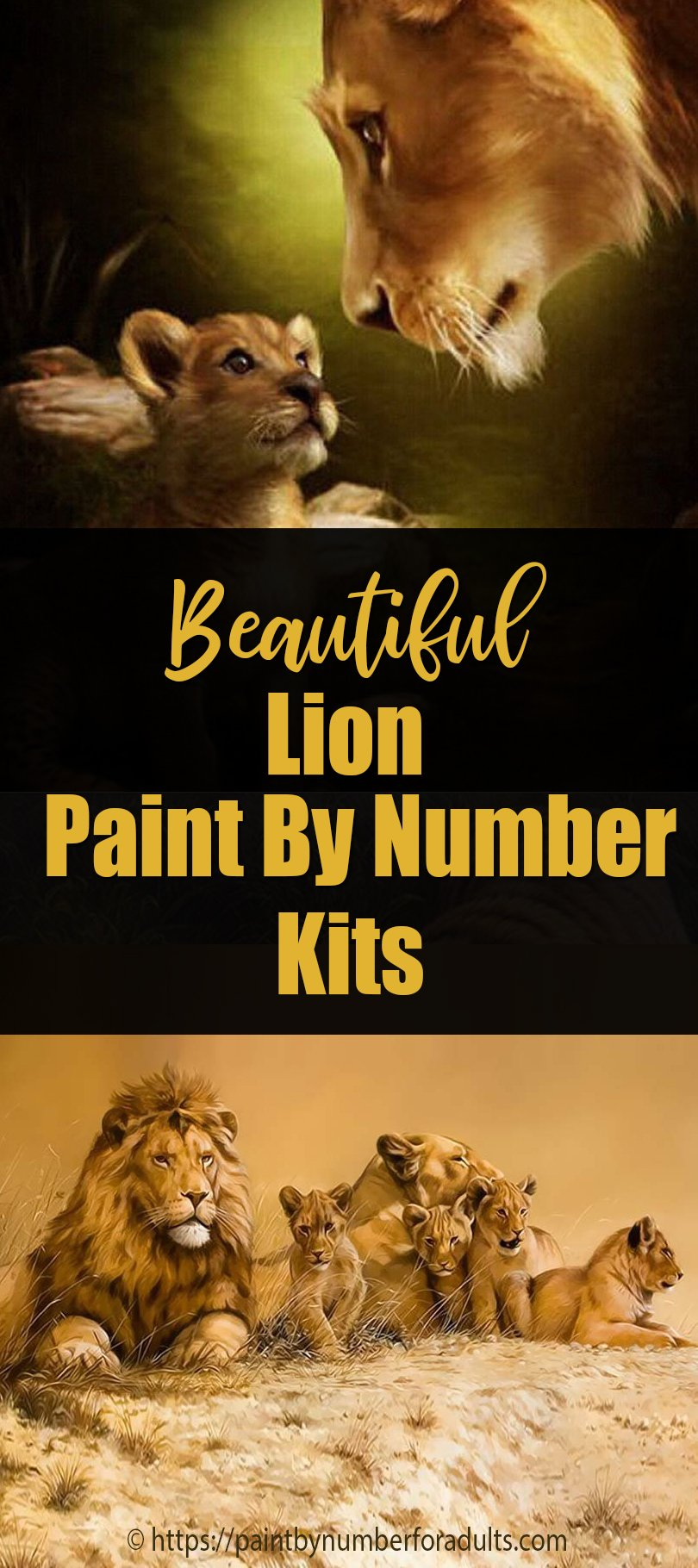 lion paint by number kits
